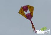 <h5>Hele mooie vlieger</h5><p>Mooie vlieger gebouwd tijdens dit bedrijfsuitje. Vloog goed en mooi gedecoreerd.</p>