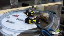 <h5>Workshop vliegers bouwen</h5><p>Workshop vliegers bouwen, erg leuk als bedrijfsuitje.</p>