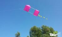 <h5>Mooie Reuzevlieger </h5><p>Mooie gebouwde reuzevlieger in de lucht.</p>