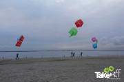 <h5>Reuzevliegers boven strandeiland Harderwijk</h5><p>aan het einde van de workshop werden alle vliegers opgelaten op het strandeiland van Harderwijk.</p>