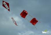 <h5>Vliegeren in Harderwijk</h5><p>Reuzenvliegers maken en oplaten. Leuk als bedrijfsuitje in Harderwijk.</p>