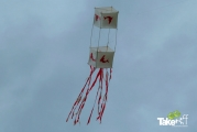 <h5>Hele mooie vlieger met dolfijnen</h5><p>Mooie vlieger mét dolfijnen die dan ook nog bijna naast het dolfinarium opgelaten wordt.</p>