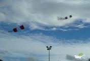 <h5>Vliegeren in Harderwijk</h5><p>Grote vliegers in de lucht boven de ijsbaan in Harderwijk.</p>
