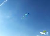<h5>Slee vlieger hoog in de lucht</h5><p>Top vliegertjes! en nog wel zelf gemaakt ook door de kinderen.</p>