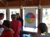 <h5>De Insights kleuren</h5><p>Samenwerken en tegelijk blijven afstemmen op elkaar.</p>
