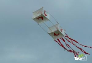 Mooie Reuzenvlieger met dolfijnen erop.