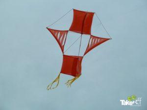 Mooie originele reuzevlieger in Bergen aan Zee