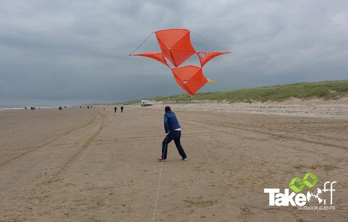 Grote reuzevlieger op het strand.
