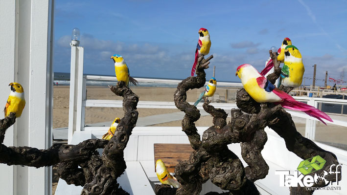 Vrolijke vogels.