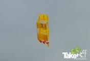 <h5>Doosvlieger </h5><p>Mooie doosvlieger in de lucht.</p>