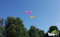 <h5>Kleurige vliegers</h5><p>Mooie kleurige vliegers boven de bomen.</p>