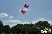 <h5>Doosvlieger</h5><p>Mooie doosvlieger in de lucht.</p>