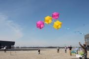 <h5>3D reuzenvlieger in Harderwijk</h5><p>Familiedag met reuzenvlieger bouwen.</p>