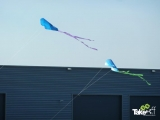 <h5>Slee vliegers doen het goed!</h5><p>Familiedag en vliegers maken.</p>