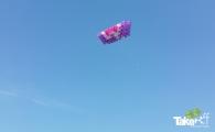 <h5>Megavlieger gemeente Bronckhorst</h5><p>Megavlieger in volle vlucht hoog boven het weiland.</p>