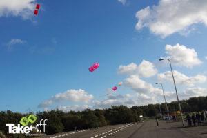 Mooie vliegers in de lucht bij Leiden.