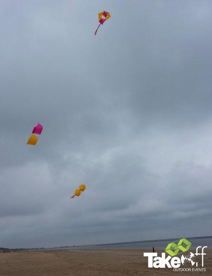 Mooie vliegers in de lucht.
