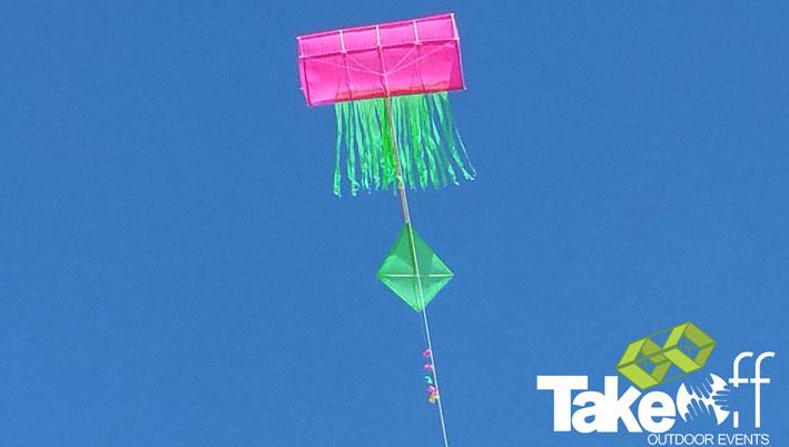 Kleurrijke doosvlieger in de lucht.